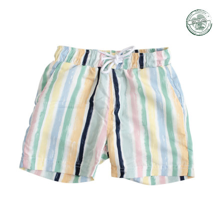 Sheldon Swim Shorts